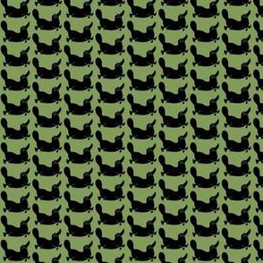Green Platypus