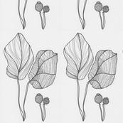 leafs_kopie