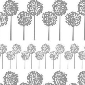 grey_seed_heads