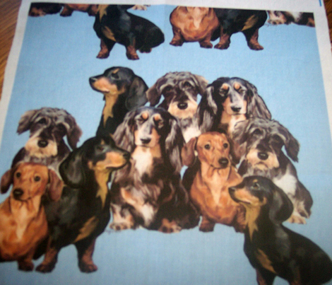 Rdachshunds_in_blue_comment_285242_preview