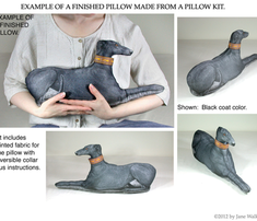 Kit-greyhound_black_male_comment_281060_thumb