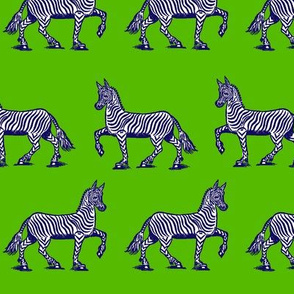 Navy Zebras on green
