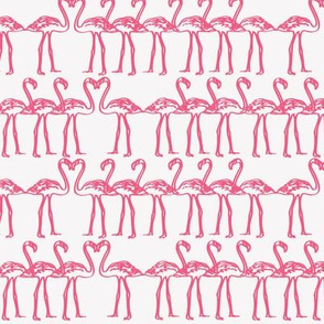 flamingos_pink_on_white