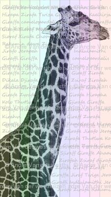 giraffe_slides