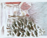 Radelaide_blackburn_winter_scene_ed_ed_thumb