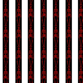 Red Skeletons with Black and White Stripes