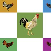 Roosters_uneven_9_patch_shop_thumb