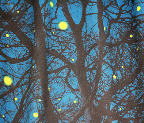 Summer Magic ~ Fireflies In Trees