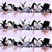 Wild_water_birds_shop_thumb