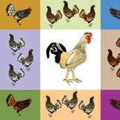 Roosters_uneven_9_patch_b_shop_thumb