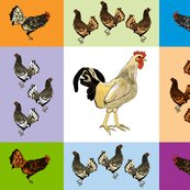 Roosters_uneven_9_patch_f_shop_thumb