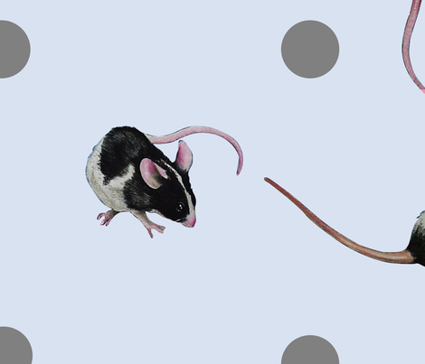 Black and White Mice   fabric by melody_lea_lamb on Spoonflower - custom fabric