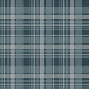 blue/ blue plaid 2014