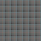 Rrunbalanced_brownblueplaid