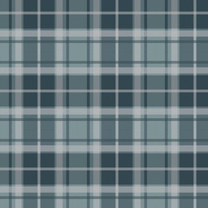 Thin Stripe blue/blue plaid
