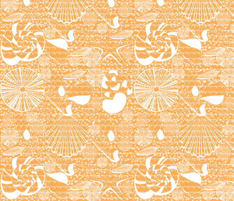 Coral Shells with water fabric by curlywillowco on Spoonflower - custom fabric
