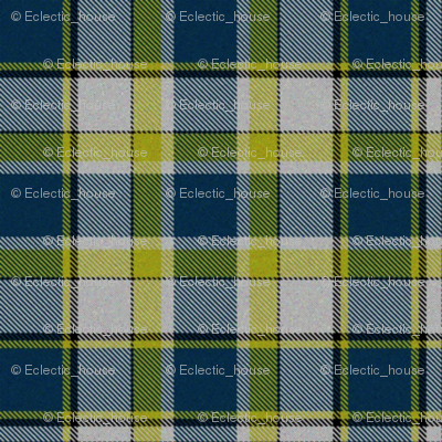 Firefly Plaid 6eclectic