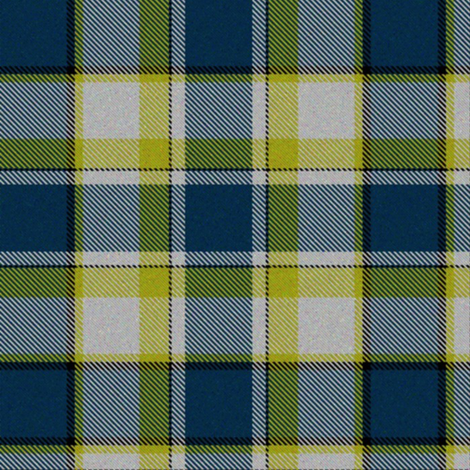 Firefly Plaid 5eclectic synergy0001 fabric by eclectic_house on Spoonflower - custom fabric