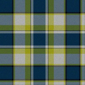 Firefly Plaid 5eclectic