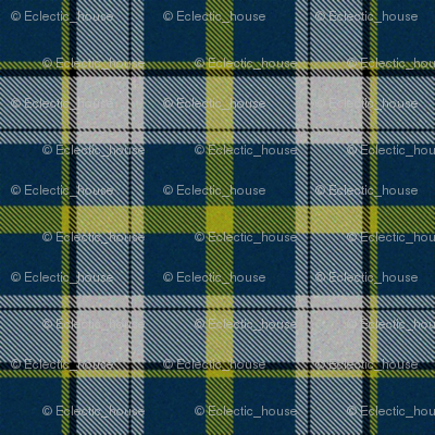 Firefly Plaid 4eclectic synergy0001