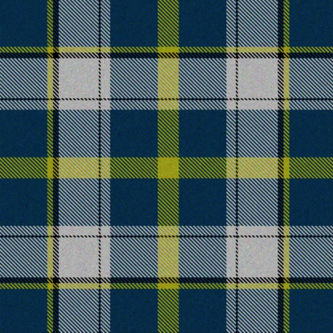 Firefly Plaid 4eclectic