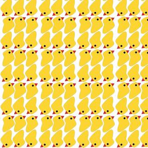 poliños amarelos