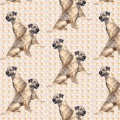 Rborder_terrier_two_shop_thumb