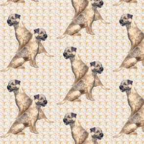 Border Terriers and paisley