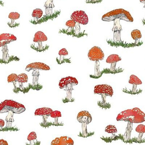 Fly Agaric (White)