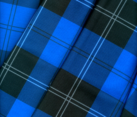 Ramsay Hunting Tartan in Blue