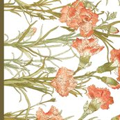 Rrflower_border_print_shop_thumb