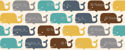 WHALES! solids