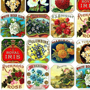 Vintage Floral Labels Color