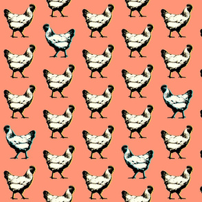 pop art chickens : coral