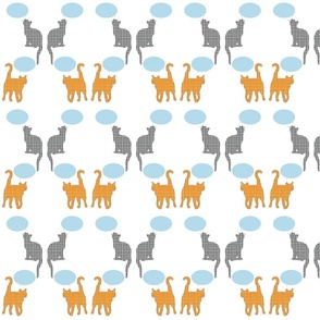 cats_speak_pattern