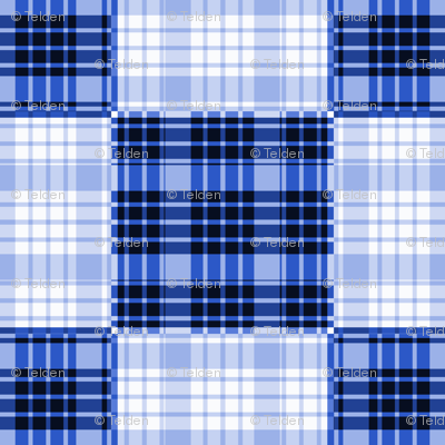 Blue Plaid - Large