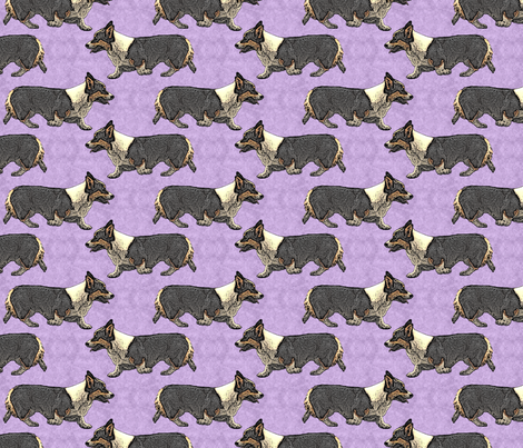 Trotting tri Pemmies - purple fabric by rusticcorgi on Spoonflower - custom fabric
