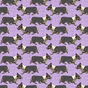 Trotting tri Pemmies - purple