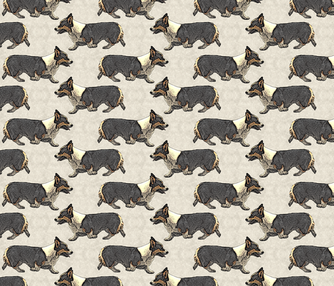 Trotting tri Pemmies fabric by rusticcorgi on Spoonflower - custom fabric