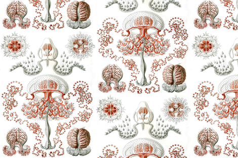 Vintage Jellyfish fabric by willowlanetextiles on Spoonflower - custom fabric