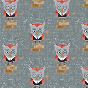 Owlbert_Einstein_Swatch
