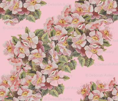 Garlands of Apple Blossoms Drifting Left