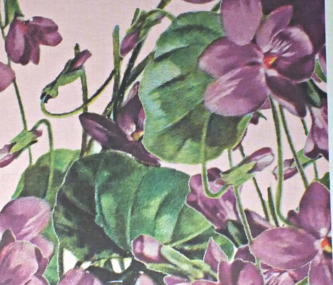 Violets_cutout_on_pink_divided__ai_300_dpi_14x12_upload_comment_331046_preview