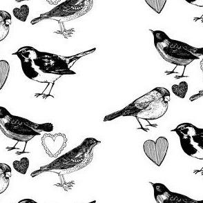 Birdee Love