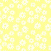 White_daisies_on_yellow_shop_thumb