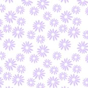 Lilac_daisies_on_white_shop_thumb