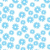 Blue_daisies_on_white_shop_thumb