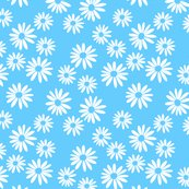 White_daisies_on_blue_shop_thumb