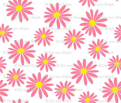 Pink Daisies on White