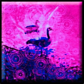Canada_Goose_water_paper_button_pink_and_blue_8x8